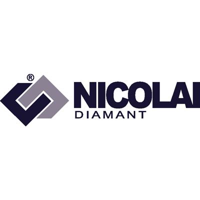 nicolai Logo.